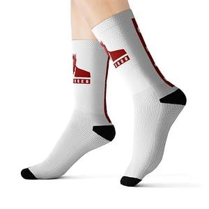 TRUMP2020 FAFO Socks