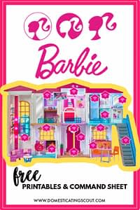 Barbie Hello Dreamhouse PIN
